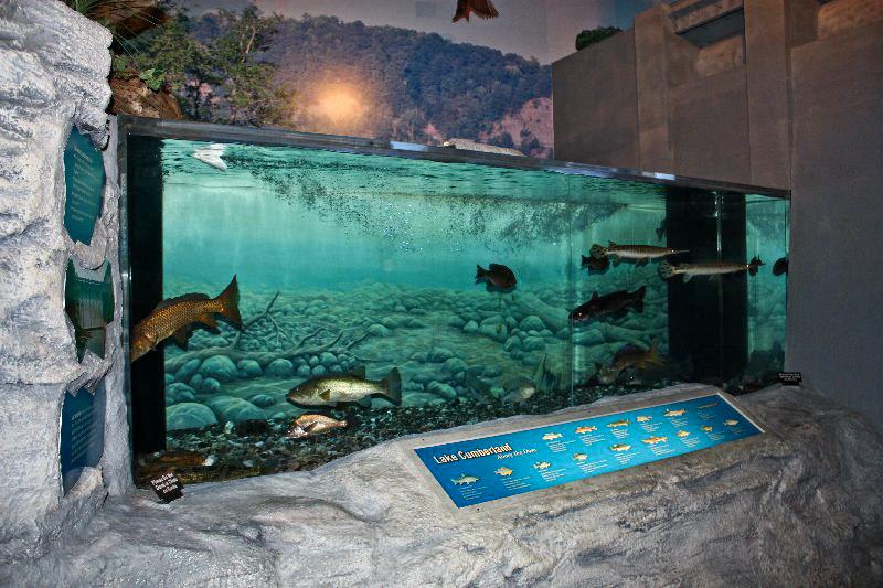 ... National Fish Hatchery, Jamestown, Kentucky Kentucky_Heirs Blog